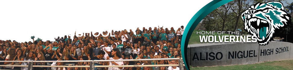 Aliso Niguel High School Home